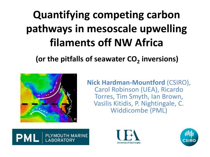 quantifying competing carbon pathways in mesoscale upwelling filaments off nw africa n.