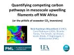 quantifying competing carbon pathways in mesoscale upwelling filaments off nw africa