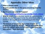 appendix other ideas