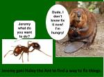 jeremy gets haley the ant to find a way to fix things
