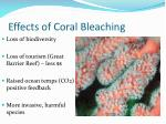 effects of coral bleaching