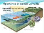 importance of ocean currents