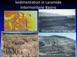 sedimentation in laramide intermontane basins