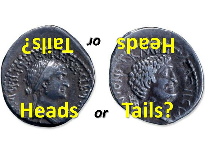 heads or tails n.