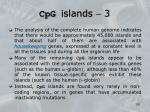 cpg islands 3