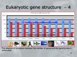 eukaryotic gene structure 4