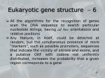 eukaryotic gene structure 6