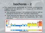 isochores 2