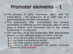 promoter elements 1