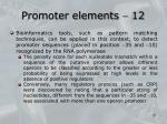 promoter elements 12