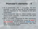 promoter s elements 4