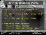 actively oxidizing pyrite