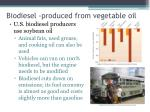 biodiesel produced from vegetable oil