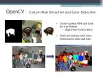 opencv custom blob detection and color detection