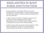 similarities in body form and function5
