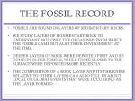 the fossil record1