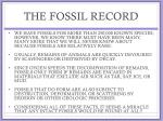 the fossil record3