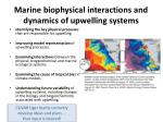 marine biophysical interactions and dynamics of upwelling systems