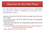 objective for the pilot phase2