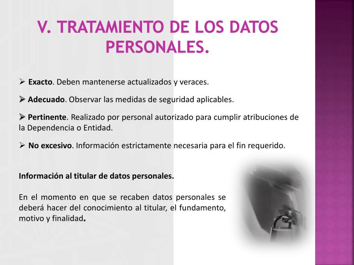 V. Tratamiento de los datos personales.