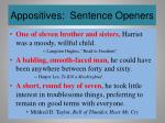 appositives sentence openers