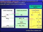 echilibrul acidobazic ap rarea mpotriva schimb rii concetra iei ionilor de h