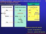 echilibrul acidobazic ap rarea mpotriva schimb rii concetra iei ionilor de h4