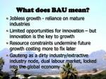 what does bau mean