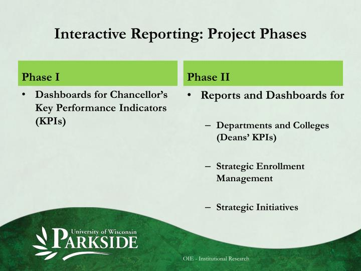 Interactive Reporting: Project Phases