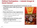 political participation interest groups social control