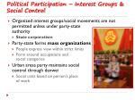 political participation interest groups social control