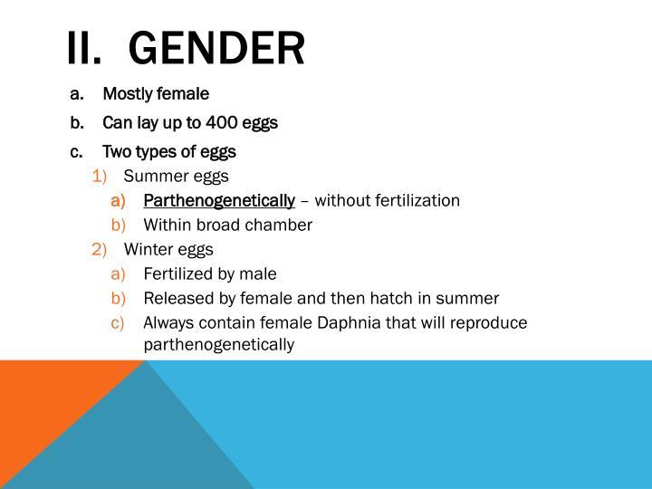 II.  Gender