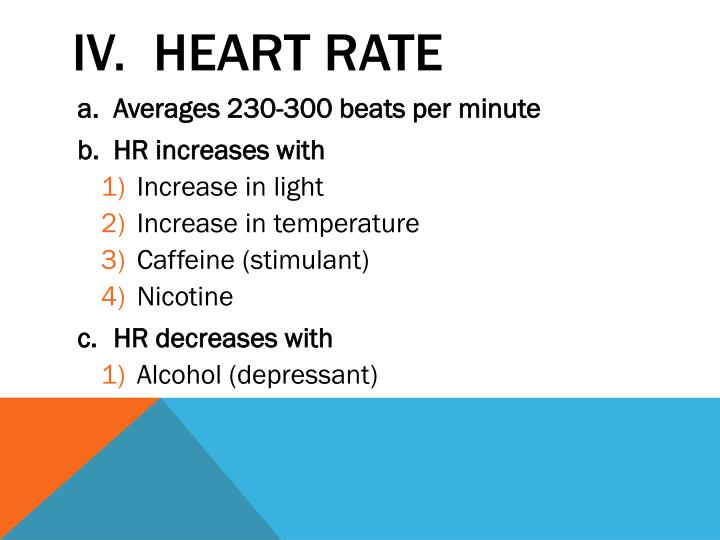 IV.  Heart Rate