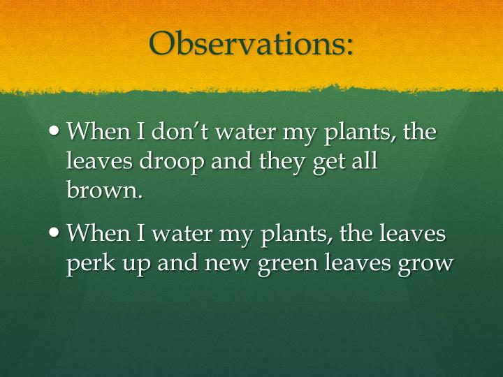 Observations: