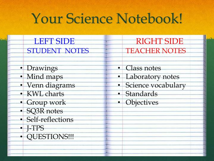 Your science notebook