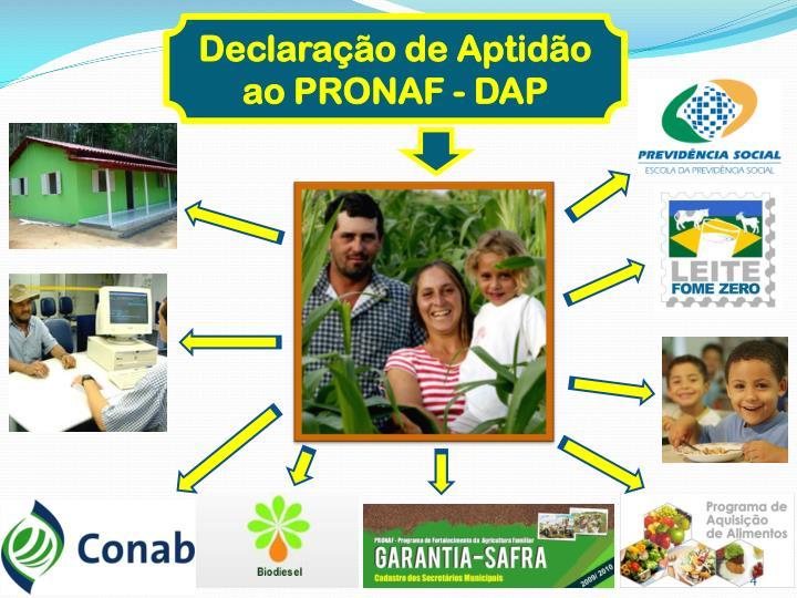 Declaração de Aptidão ao PRONAF - DAP