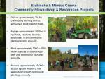 etobicoke mimico creeks community stewardship restoration projects
