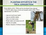 planting efforts in the trca jurisdiction