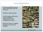 overurbanization1
