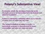polanyi s substantive view