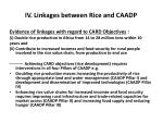 iv linkages between rice and caadp2