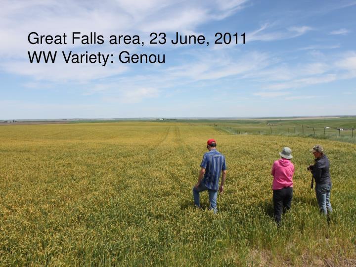 Great Falls area, 23 June, 2011