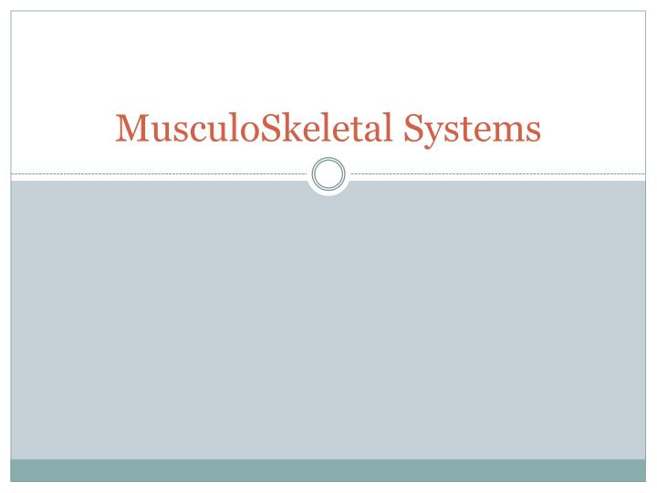 musculoskeletal systems n.