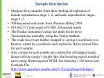 sample description