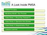 a look inside pmsa