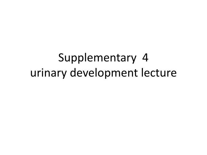 supplementary 4 urinary development lecture n.