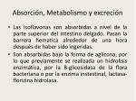 absorci n metabolismo y excreci n