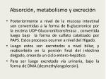 absorci n metabolismo y excreci n1