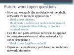 future work open questions