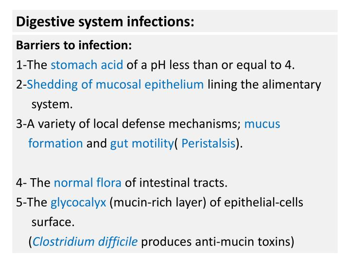 digestive system infections n.